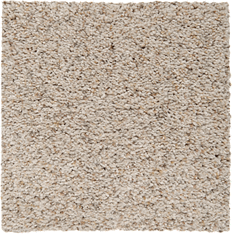 Textured carpet from shaw | Roberts Carpet & Fine Floors