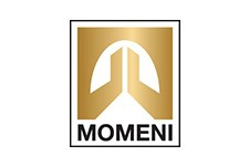 Momeni | Roberts Carpet & Fine Floors