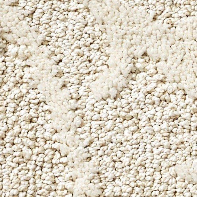 Shaw carpet | Roberts Carpet & Fine Floors